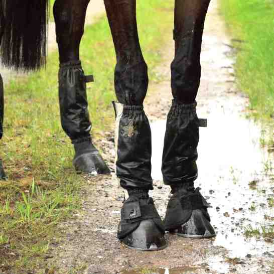 Don't let mud & wet ruin your horse's boots use Golly Galoshes. Photo Thoroughbred Sports Photography